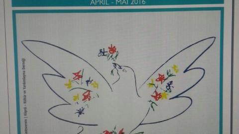 Frühlings-Streiflichter und meine Gedanken von Gesunden und Kranken!